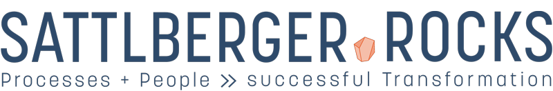 http://sattlberger-rocks-international-interim-management-logo-800
